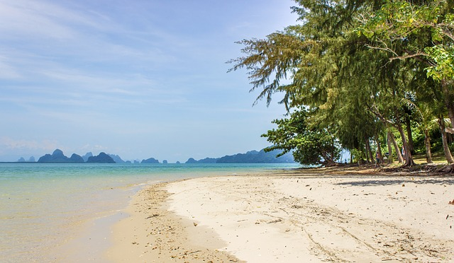 beach-2404709_640